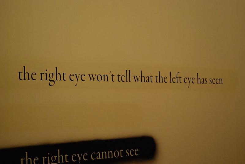 douglas-gordon_eye-and-eye-wall-text-2008