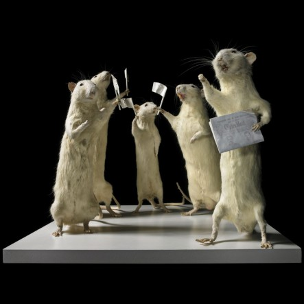 the last days of mankind , 1. Act / 1 Scene  at the Sirk- corner. 1 Newspaper-seller, 4 passerbys. 2013 stuffed rats and  requisites on wooden pedestals  hight dimension of the scene: variable  © Deborah Sengl, 2014  Photo: Mischa Nawrata, Wien