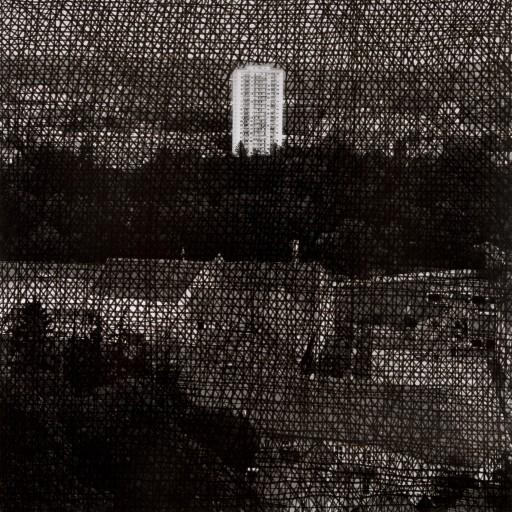 """Lea Titz """"Graze"""" 2011, Tusche, Barytabzug auf Aluminium,100x100cm"""