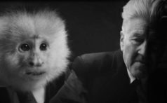 netflix-david-lynch-what-did-jack-do-short-film-monkey